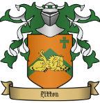 pitton