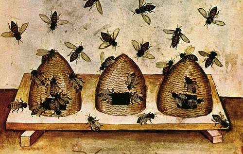 Shrewton-bees.jpg